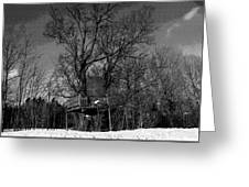 Tree House In Black And White Greeting Card