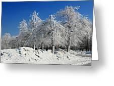 Tree Ice Greeting Card