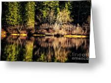 Tree Impressions Greeting Card