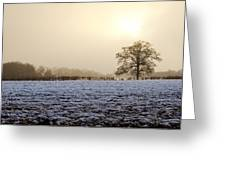 Tree In A Field On A Snowy Day Greeting Card