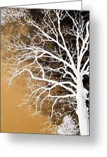 Tree In Abstract Greeting Card