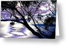 Tree In Silhouette Greeting Card