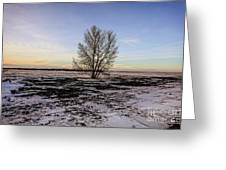 Tree In The Field Greeting Card