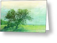 Tree In The Flint Hills Greeting Card