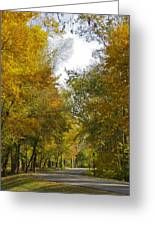 Tree Lined Park On A Fall Day Greeting Card