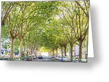 Tree-lined Street Greeting Card