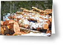 Tree Logs  Greeting Card
