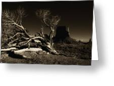 Tree Monument Valley Greeting Card