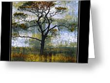 Tree Of Colours Greeting Card