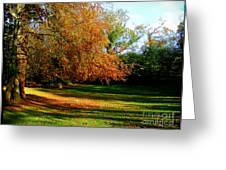 Tree Of Gold Greeting Card
