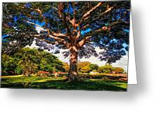Tree Of Joy. Mauritius Greeting Card