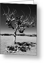 Tree Of Lost Soles 2 Greeting Card