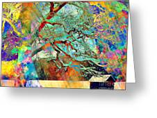Tree Of Many Colors Greeting Card