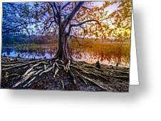 Tree Of Souls Greeting Card