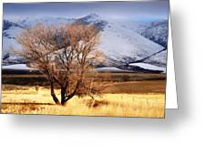 Tree On The Farm Greeting Card
