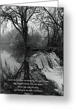 Tree Planted By The Rivers Greeting Card