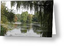 Tree Reflection In Autumn Greeting Card