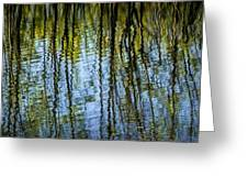 Tree Reflections On A Pond In West Michigan Greeting Card