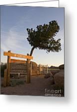 Tree Rock Wyoming Greeting Card
