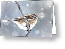 Tree Sparrow In The Snow Greeting Card