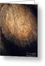 Tree Texture Background Greeting Card