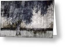Tree Through Sheer Curtains Greeting Card