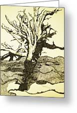 Tree Trunk By The Sea Greeting Card