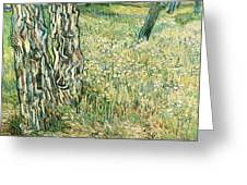 Tree Trunks In Grass Greeting Card