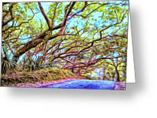 Tree Tunnel Near Isaac Hale Beach Greeting Card