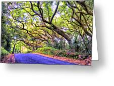 Tree Tunnel On The Big Island Greeting Card