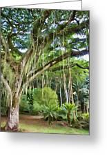 Tree-waimea Arboretum Greeting Card