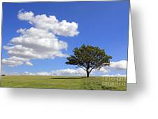 Tree With Clouds Greeting Card