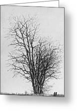 Tree With Figures Greeting Card