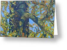 Tree With Green Leaves Greeting Card