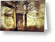 Tree With Shadows Greeting Card