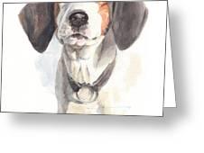 Treeing Walker Coonhound Greeting Card