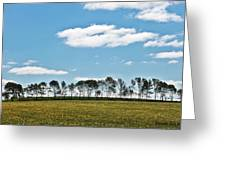 Treeline Greeting Card