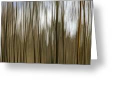 Trees #2 Greeting Card
