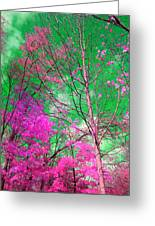 Trees Alive In Pink Greeting Card