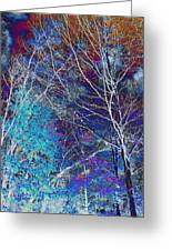 Trees Alive With Color Greeting Card