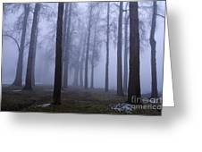 Trees Along Greenlake In Fog Greeting Card