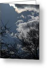 Trees And Clouds 3 Greeting Card