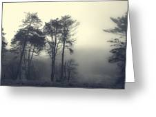 Trees And Fog At Castle Hill Greeting Card