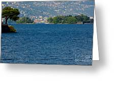 Trees And Islands Greeting Card
