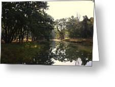 Trees And Lake Print Greeting Card