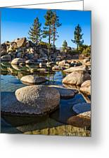 Trees And Rocks Greeting Card