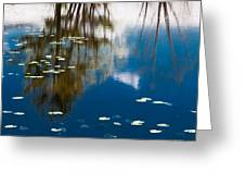 Trees And Sky In The Water Greeting Card