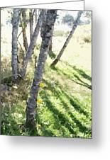Trees At A Picnic Greeting Card