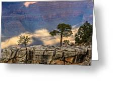 Trees At The Grand Canyon Greeting Card
