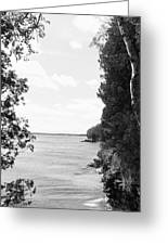 Trees At The Lakeside, Cave Point Greeting Card